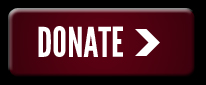 Donate Button - 5K Run 2014